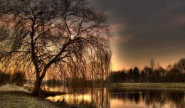 beside the lake in sunset wallpaper in Nature wallpapers with all 1748