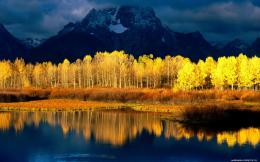 Wallpaper Gold Autumn Water Mountains1680x1050 pixelNature HD 1469