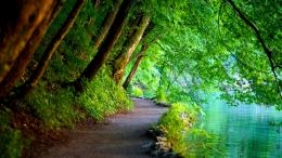 Name: #741961 More Beautiful Awesome Nature Wallpaper   FLgrx Graphics 308