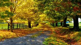 Nature Wallpapers 1808