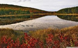 Pond In Acadia National Park Maine Hd Wallpaper | Wallpaper List 1205