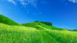 Nature Hill Wallpaper Green Hill x Nature Wallpaper 1122