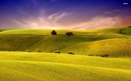 Green summer hills wallpaperNature wallpapers#15131 810