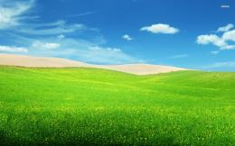 Green hills wallpaper 332