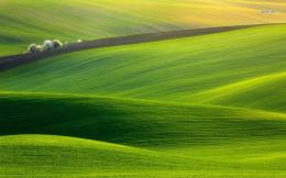 Heavenly green hills wallpaperNature wallpapers#15133 1125