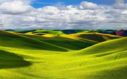 Green hills wallpaper #14151 835