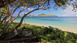 Download Hammock on Beach Fiji wallpaper in Nature wallpapers with all 182