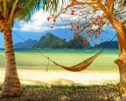 Download Hammock On Beach Fiji Wallpaper In Nature Wallpapers With All 1439