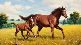 Wallpaper horse, foal, a meadow, painting, arthur saron sarnoff 1133