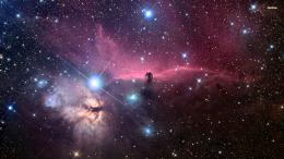 Horsehead Nebula wallpaperSpace wallpapers#38827 1687