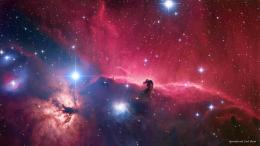Horsehead Nebula Wallpapers 1932