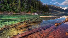 HDR, nature, landscape, river, trees, forest :: Wallpapers 449
