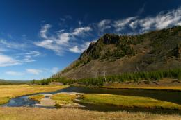 Fly Fishing In Yellowstone National Park: There\'s Fun Here 1526
