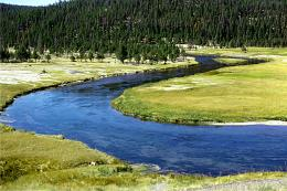 Fly Fishing In Yellowstone National Park 886