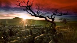 Deserted land in sunshine and red sky wallpaper in Nature wallpapers 651
