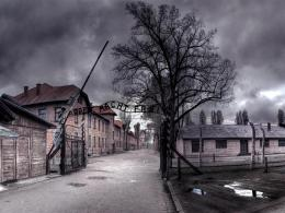 Concentration Camp In Mean Skies Hd Wallpaper | Wallpaper List 1121
