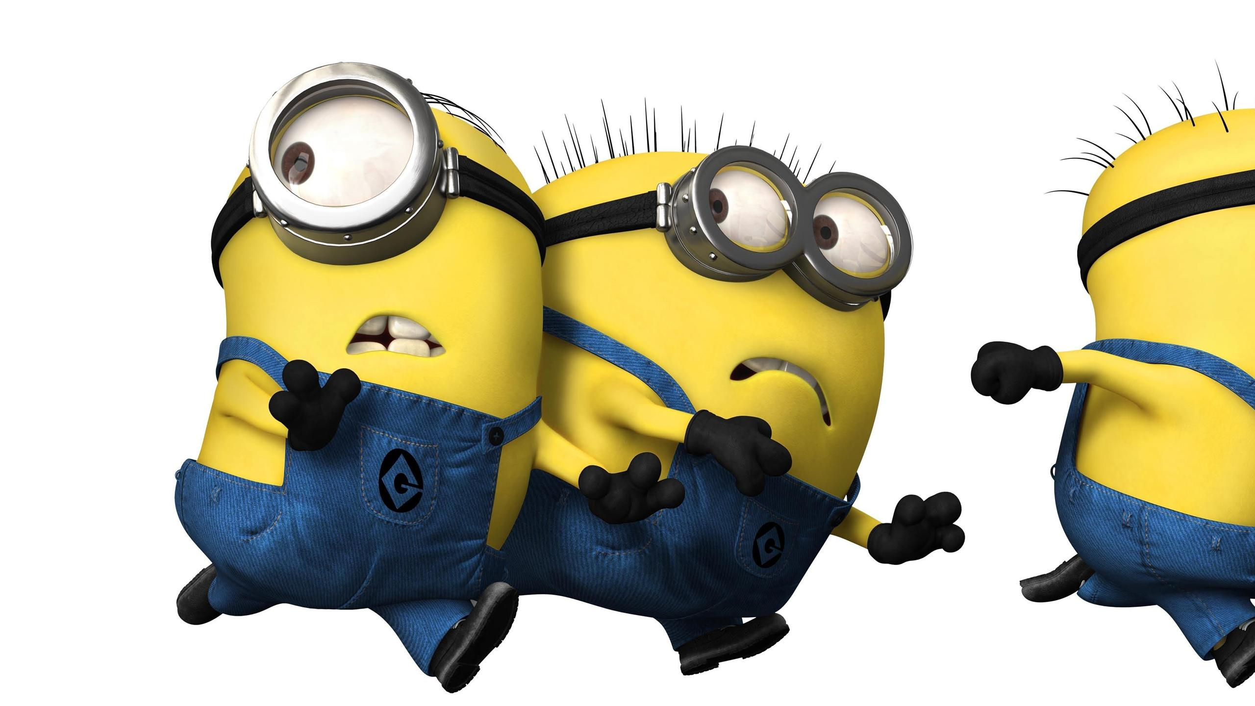 wallpaper, minions, cute, definition, wallpapers, high, windows 1618