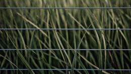 Fence Hd Wallpaper for Pinterest 137