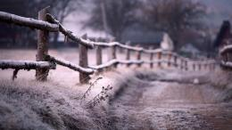 Download Old fence in winter wallpaper in Nature wallpapers with all 583