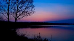 Lakeside tree at dusk wallpaper354980 1543