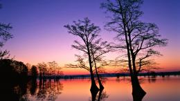 Water Sunset Landscapes Nature Trees Dusk Fresh New Hd Wallpaper 976