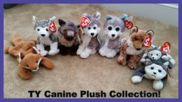 TY Canine Plush Collection! by Vesperwolfy87 on DeviantArt 1774