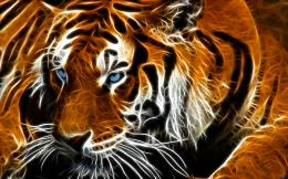blue eyed tiger by billstelling digital art fractal art i think this 1253