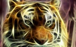 ecran : Eyes of TigerId : 3488Rubrique de l\'image : Art Design 436