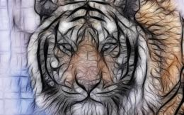 art cg digital tiger stripes pattern predator pov eyes wallpaper 160