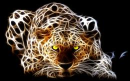 wallpaper collections, lion fractal, wolf fractal, fractal art,tiger 215