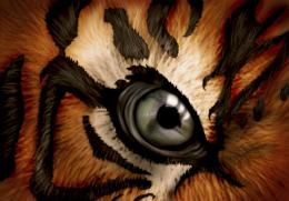 Eye of the Tiger by DriveByArtist on DeviantArt 1003