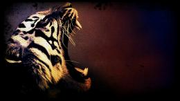 Tiger art wallpaper | 1920x1080 | 29329 | WallpaperUP 941