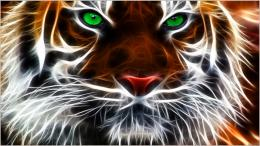 2560x1440 light eyes tigers fractalius green eyes bengal bengal tigers 772