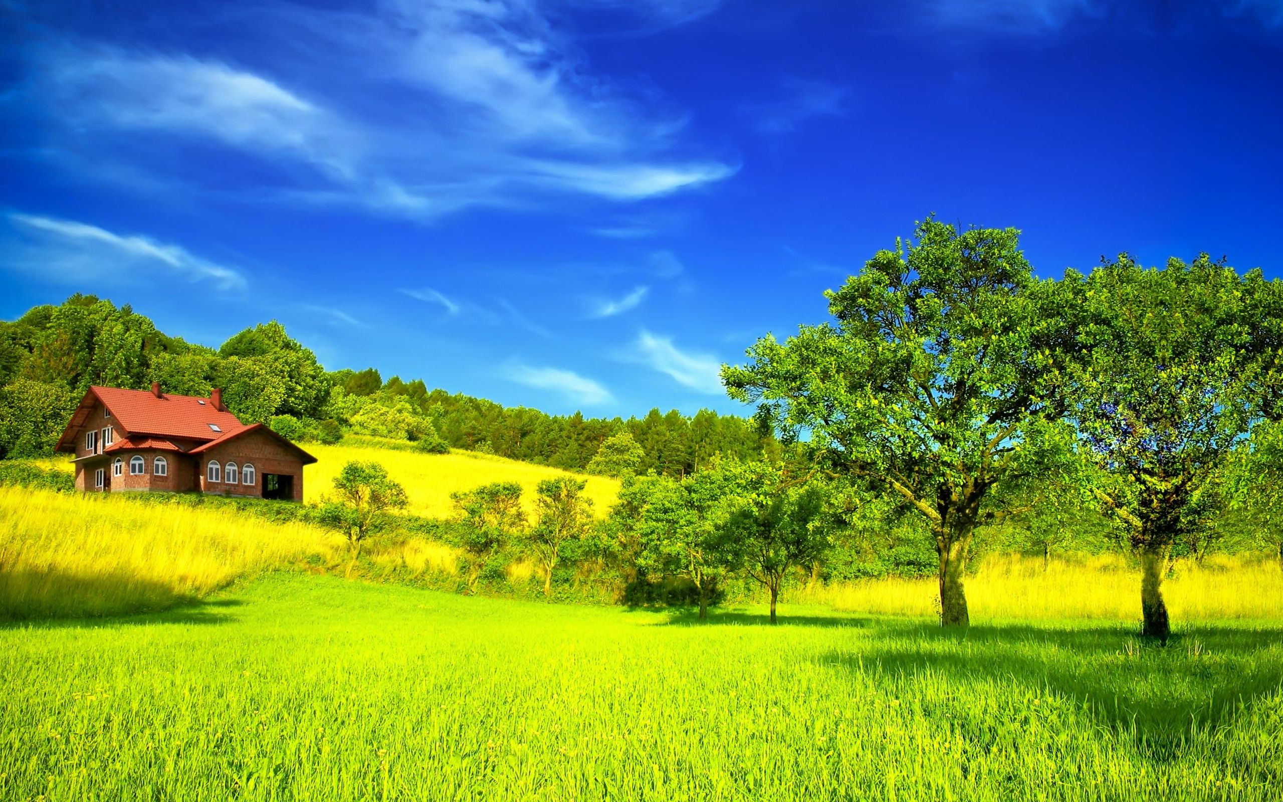 Dream Summer 2012peaceful place is a great wallpaper for your 141