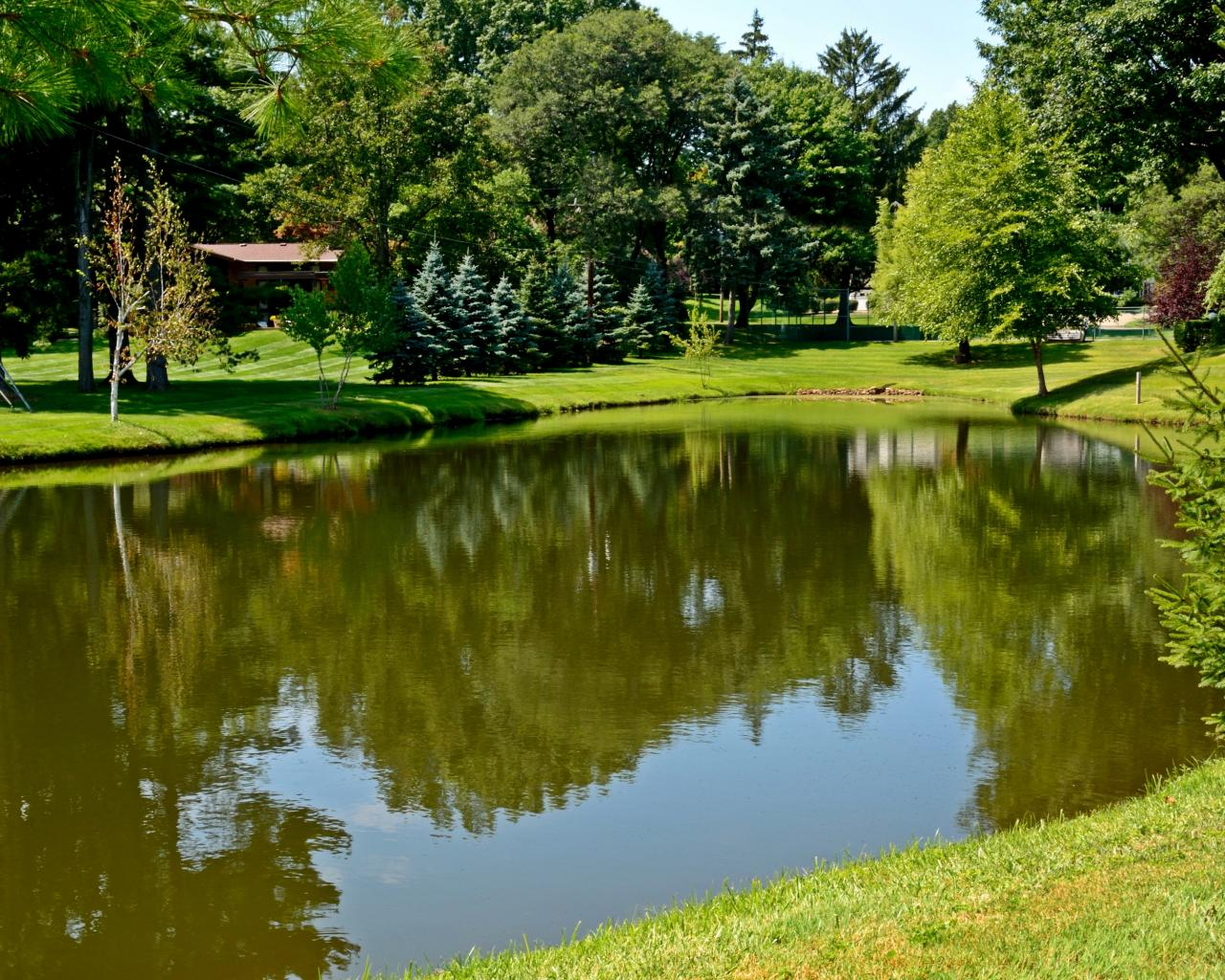 Summer reflections pond scenic peaceful 1280x1024 1840