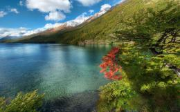 Download Peaceful lakescape in summer wallpaper in Nature wallpapers 1177