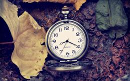 Pocket Watch Leaves White HD Wallpapers 866