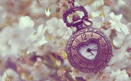 Pocket watch, Time, Macro, metal wallpapers and imageswallpapers 1897