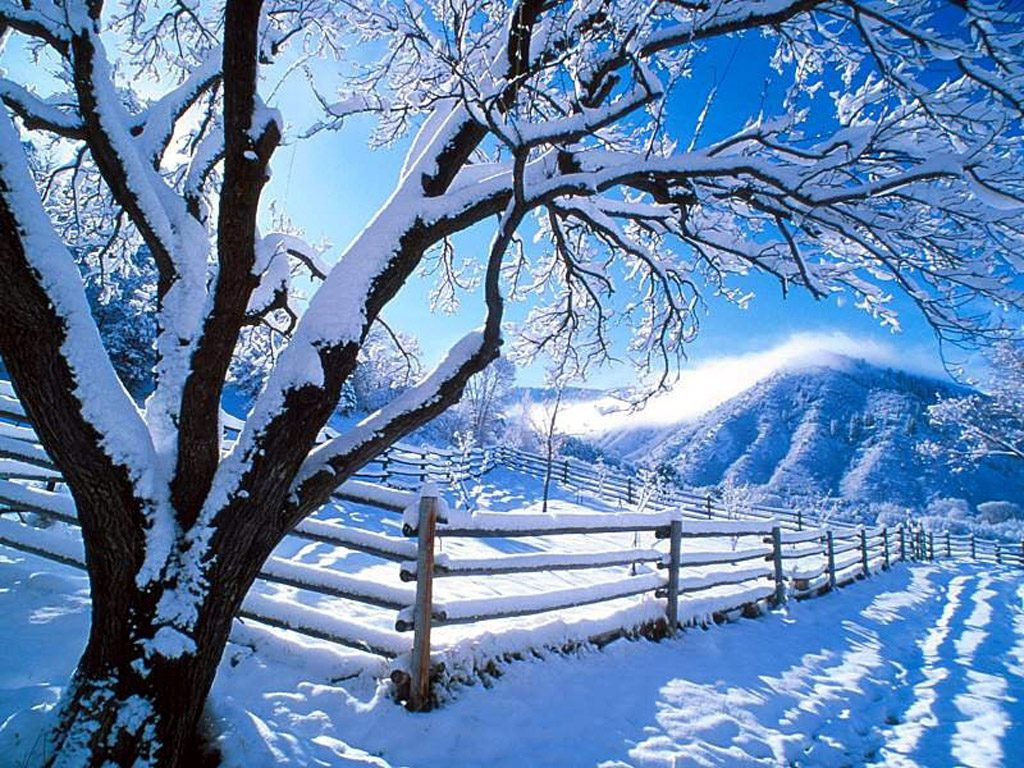 Beautiful snow covered mountain 856