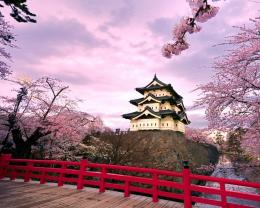 Red Bridge At Japanese Temple Wallpaper | HD Walls | Find Wallpapers 281