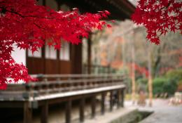 Japan Wallpapers and Images: Japanese Temple Scenery Wallpapers 873