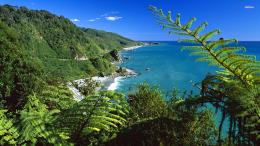 , New Zealand wallpaper 1280x800 Paparoa National Park, New Zealand 1167