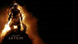 Download The Elder Scrolls V Skyrim Dark Fire Poster HD Wallpaper 621