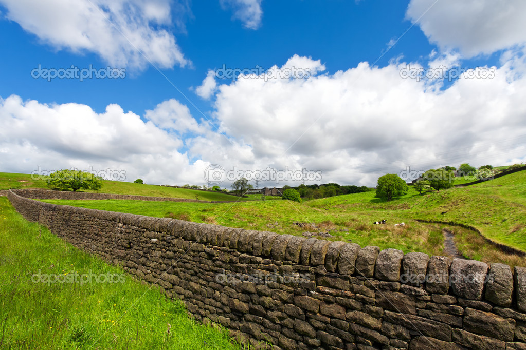 dry stone wall in the Yorkshire — Stock Photo © WDGPhoto #3308176 896