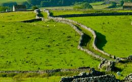 Photo of Yorkshire Dales countryside, Malham 300