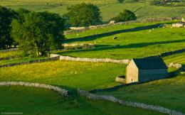 Photo of Yorkshire Dales near Malham 1411