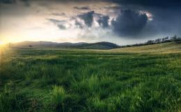Field after the storm Wallpaper | Wallpaper Collective 1585
