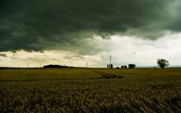 1440x900 Gloomy Wheat Field Stormy Sky desktop PC and Mac wallpaper 1486