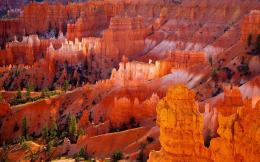 Bryce canyon national park Wallpapers Pictures Photos Images 1321