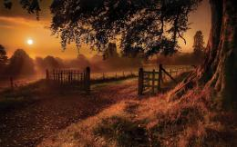 Sunset Tree Farm Path Fences wallpapers | Sunset Tree Farm Path Fences 1157
